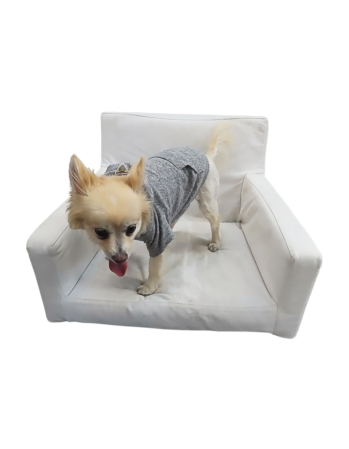 Cozy Doggy Hoodie
